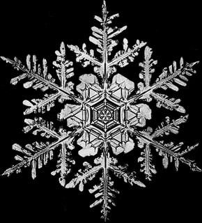 Como poner el efecto de nieve en Wordpress